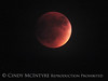 Blood Moon 9-27-15, S Calif (9)