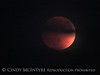 Blood Moon 9-27-15, S Calif (6)