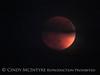 Blood Moon 9-27-15, S Calif (6)
