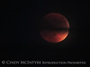 Blood Moon 9-27-15, S Calif (7)
