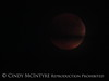 Blood Moon 9-27-15, S Calif (8)