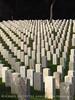 Veterans cemetery, Cabrillo NM, San Diego CA (19)