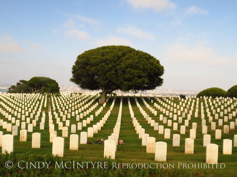 Veterans cemetery, Cabrillo NM, San Diego CA (9)