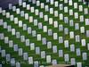Veterans cemetery, Cabrillo NM, San Diego CA (27)