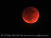 Blood Moon 9-27-15, S Calif (10)
