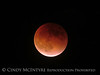 Blood Moon 9-27-15, S Calif (13)