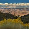 Hwy 178 near Kern River Audubon Preserve, California