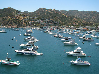 Catalina Island Avalon-4310
