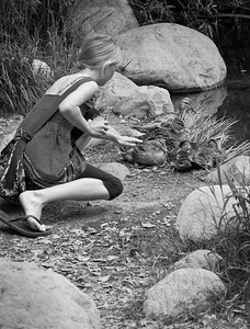 Descanso Gardens, Los Angeles, CA