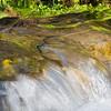 El Dorado Nature Center-4997