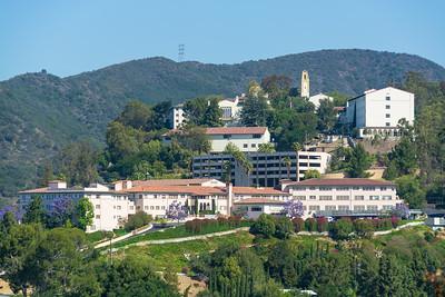 Mt Saint Mary's College-3534