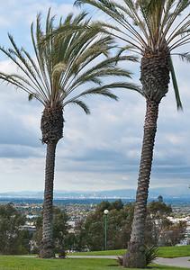 Hermosa Beach-6701
