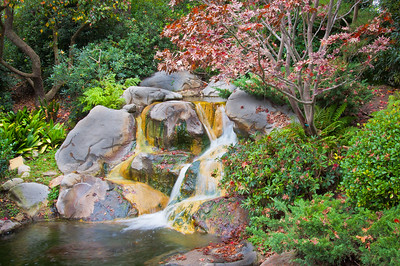 Japanese Gardens at CSULB--Long Beach, California