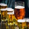 Stone Brewery-3782