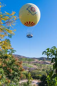 San Diego Safari Park-1213