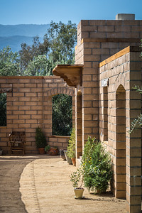 Olive View Ranch-8141