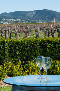 Temecula_Ponte-1617-External Edit-3