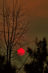 Smoky Sunset. Yes, that is the sun surrounded by smoke from the Station Fire. Shot in Littlerock CA