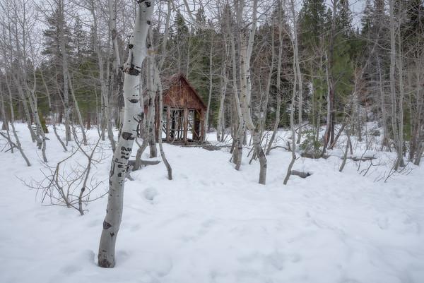 Old Truckee Cabin