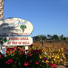 Temecula California, Bella Vista Vineyard