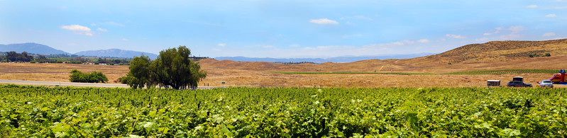 Temecula California, Panorama View from Doffo Winery Terrace