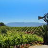 Temecula California, Doffo Winery
