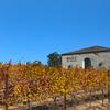 Temecula California, Baily Vineyards & Winery