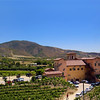 Temecula California, Robert Renzoni Vineyards