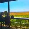 Temecula California, Doffo Winery