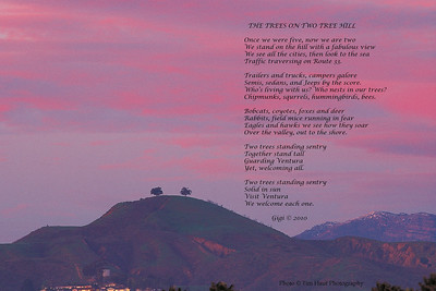 Two Tree Hill and poem