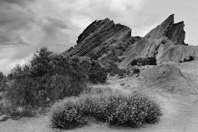 Vasquez Rocks & Spring Flowers B/W Converted using NIK Silver Efex