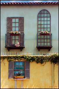 Pacific Avenue Windows Venice Beach CA