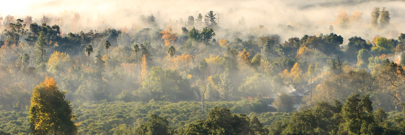 Early morning ground fog rises from the valley floor on a late autumn day