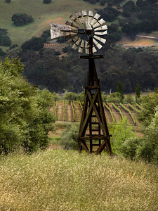 (50) Windmill and Vineyard 2, Livermore, California.   The fan blades are now gone, the landscape changing, ever transforming, as are we ourselves.