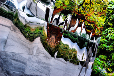 Disney Garden Reflections