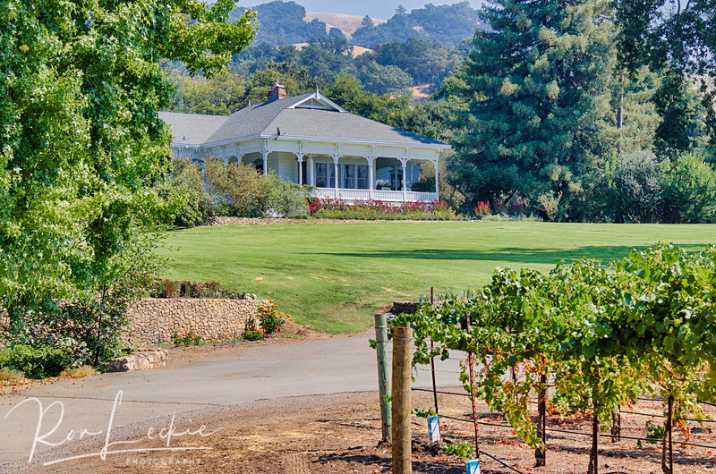 Northern California - Sonoma County - Alexander Valley Vineyards