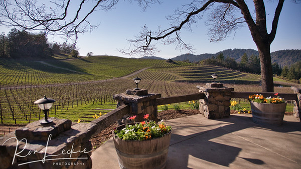 Pride Mountain Winery