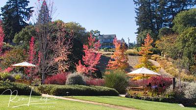Northern California - Sonoma County - Lambert Bridge Winery