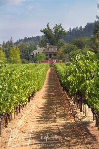 Northern California - Sonoma County - Dry Creek - A. Rafanelli Winery