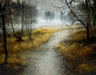 Enjoy Your Path