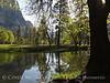 Merced River, Yosemite NP (5)