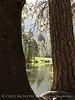 Merced River, Yosemite NP (1)