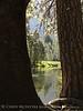 Merced River, Yosemite NP (2)