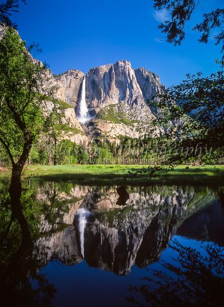 Yosemite Falls in Yosemite National Park, California, USA.