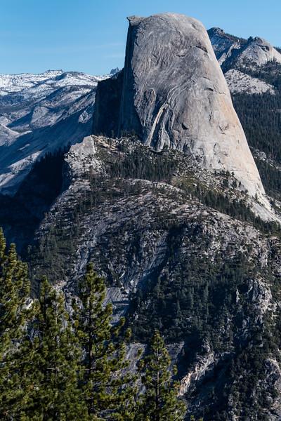usa; california; yosemite national park; landscapes; glacier domes; half dome; plants; trees; pines