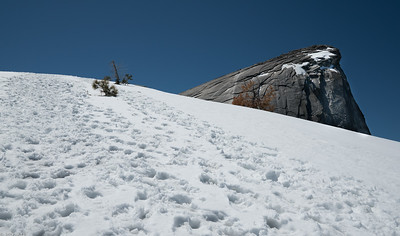 Half Dome as seen from a Sub Dome slope