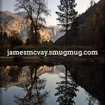 Tree Reflection Fall Yosemite