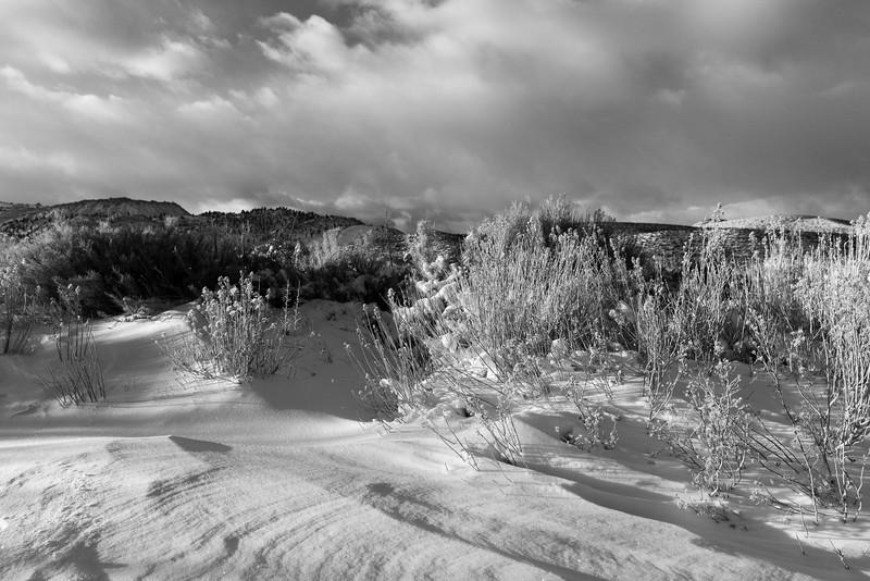 Snow and Shadows, Mono County, CA