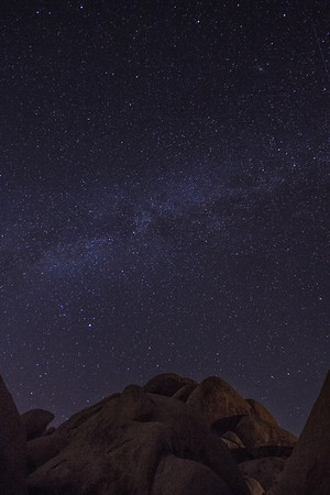 Starry Night at Joshua Tree