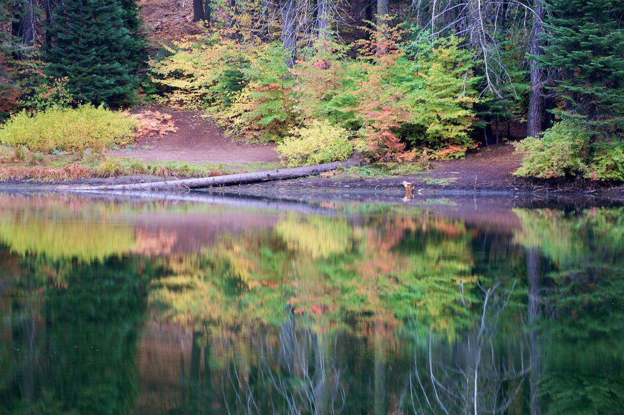 Fall Colors at Balch Park